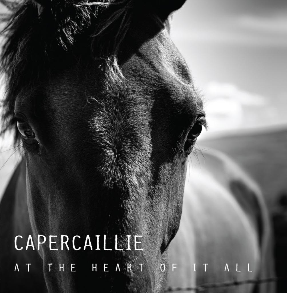 Capercaillie_Attheheartofitall_frontsleeve_zpsbf2e4597