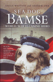 bamse-book