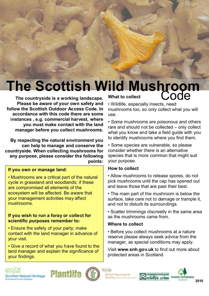 czy można zbierać grzyby w Szkocji