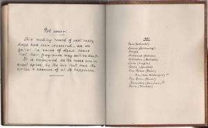 pamiętniki z podróży -0010