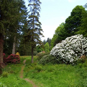ogrody w Cortachy -0004