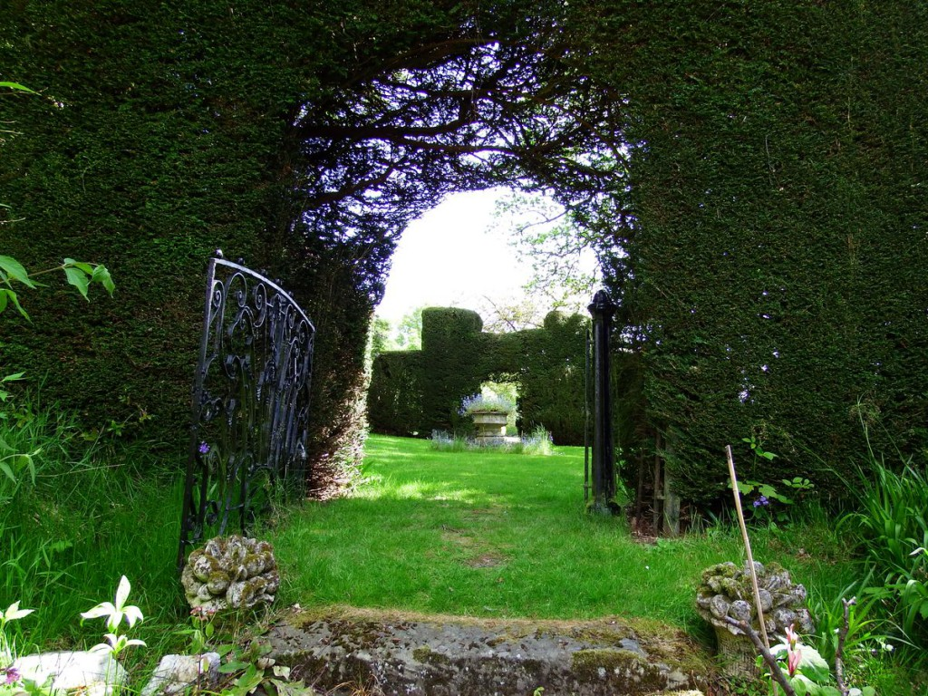 ogrody w Cortachy -0060