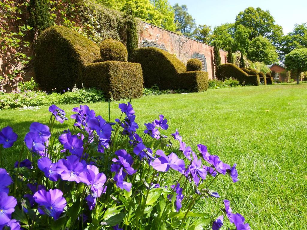 ogrody w Cortachy -0063