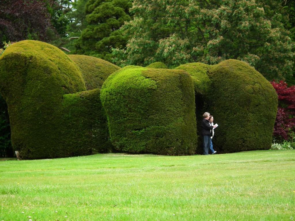ogrody w Cortachy -0075