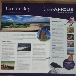 lunan-bayl-0024