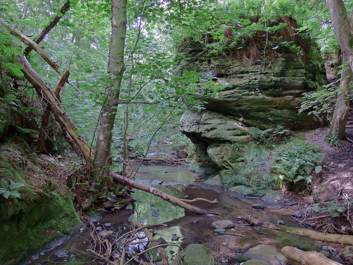 Dunino Den - strumień wiedźm