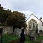 Cis z Fortingall – najstarsze drzewo Szkocji