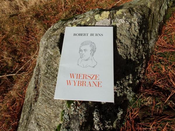 Wiersze wybrane - Robert Burns