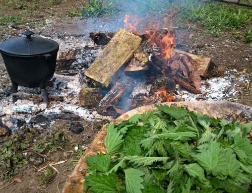 tradycyjna zupa z pokrzywy